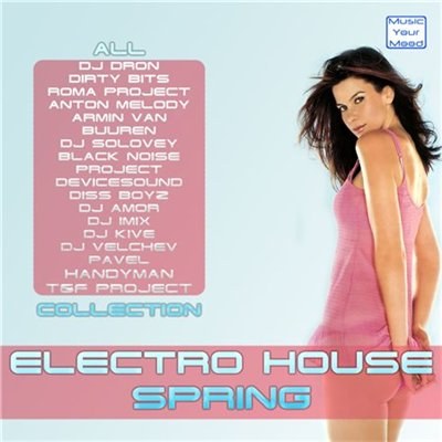 Electronic house electro vol11 (2011)