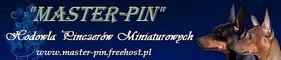 Master-Pin