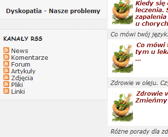 img.liczniki.org/20120329/rss-1333047302.png
