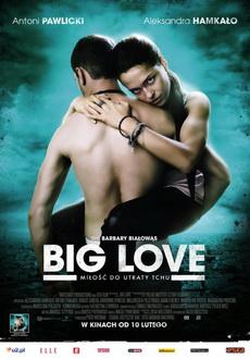 Big_Love_2012_PL_DVDRiP_XViD_PSiG