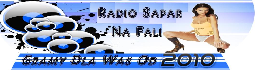 www.nowysapar.dbv.pl
