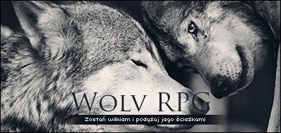 www.wolv.aaf.pl