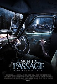 Spustoszenie / Lemon Tree Passage (2013)