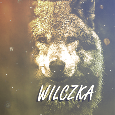 wilczka1-1529009596.png