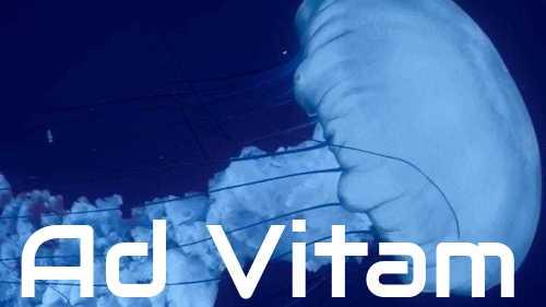 Ad Vitam – sezon 1
