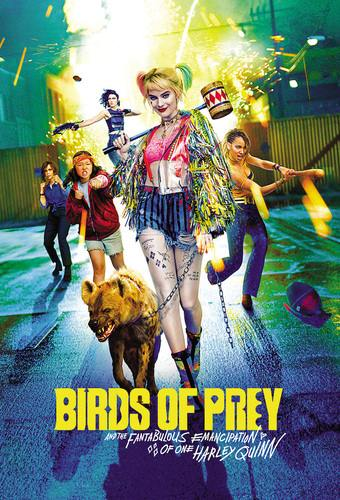 Birds Of Prey And The Fantabulous Emancipation Of One Harley Quinn 2020