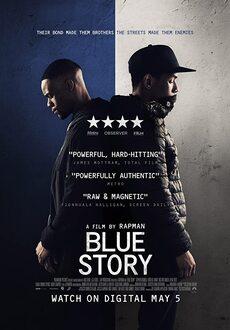 Barwy gangu / Blue Story (2019)